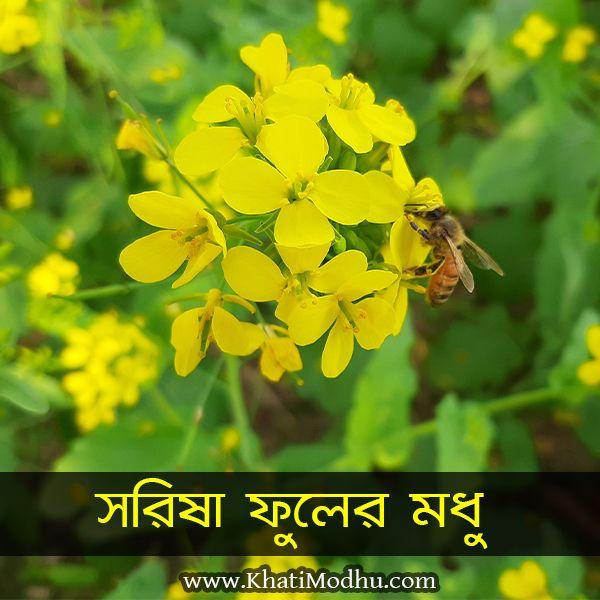 সরিষা ফুলের খাঁটি মধু, sorisha fuler khati modhu