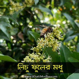 লিচু ফুলের খাঁটি মধু – ২০২০ (Lychee Honey)