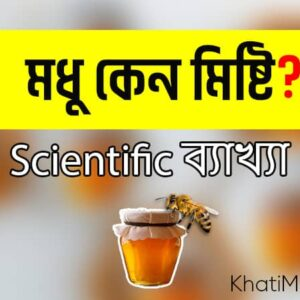 Read more about the article মধু কেন মিষ্টি? Scientific ব্যাখ্যা জানুন