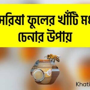 Read more about the article সরিষা ফুলের মধু চেনার উপায়